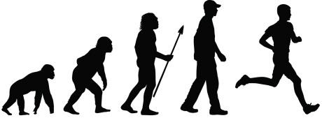 Evolucija u treningu